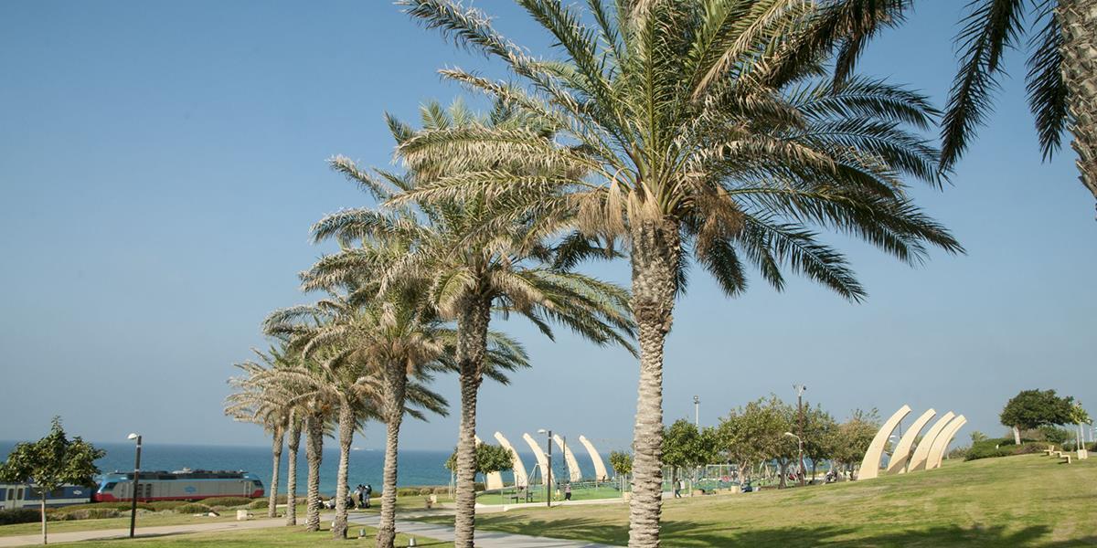חיפה, פארק הכט- טיילות פארקים וטבע עירוני (4)