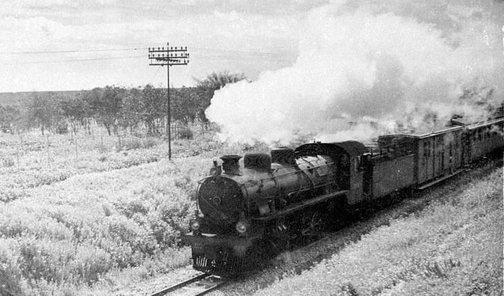 רכבת על מסילת העמק ההיסטורית