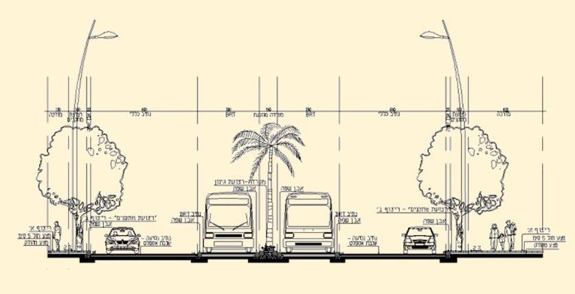 כביש 44, חתך אופייני BRT