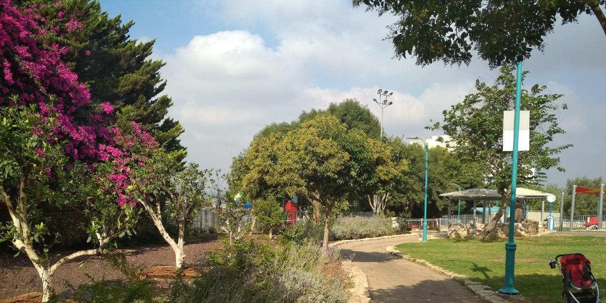 נצרת הר יונה (1)